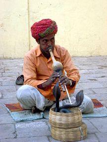 270px-Charmeur_de_serpents_à_Jaipur_(2)