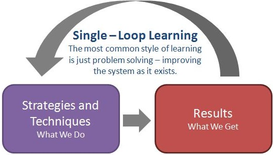 single loop learning and double loop learning Single-loop learning is the ability to use feedback to make continuous adjustments and adaptations, to maintain performance at the standard which the organisation is looking for double-loop learning is the ability to challenge and redefine the assumptions underlying performance standards and to improve performance.